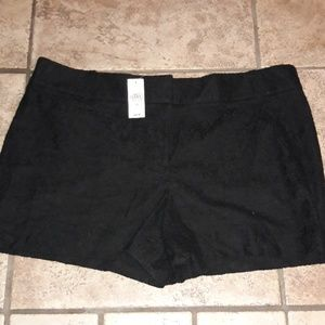 Womens sz 18 LOFT lacey knitted layered shorts NWT